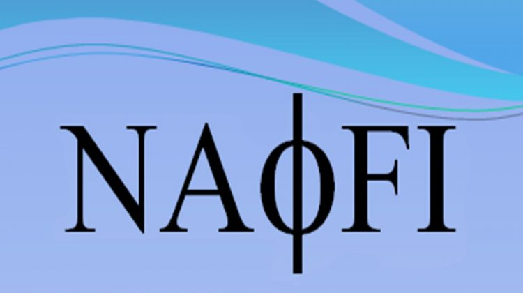 Logo Equipe NAFI