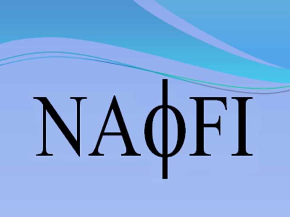 Logo Thematique NAFI