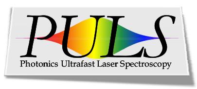 Logo Thématique PULS