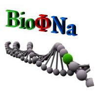 Logo BioPhyNa